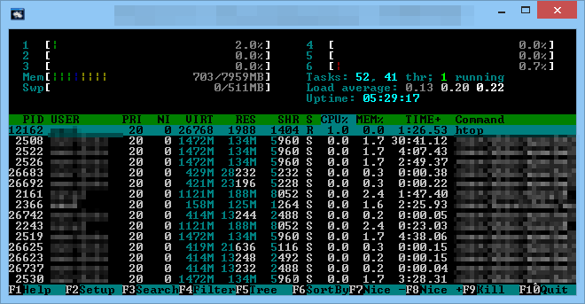 Systemmonitoring mit htop