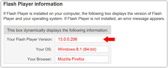 Flash Version im Browser anzeigen
